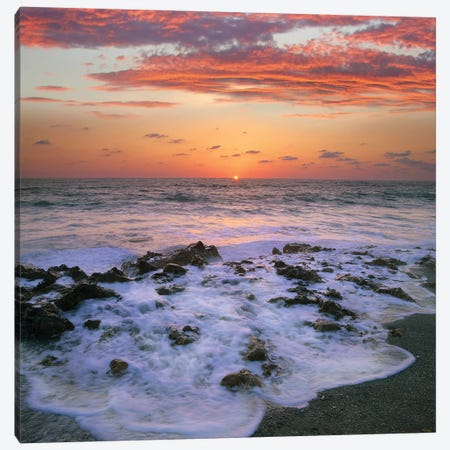 Coast At Sunset, Blowing Rocks Beach, Jupiter Island, Florida Canvas Print #TFI227} by Tim Fitzharris Canvas Art Print