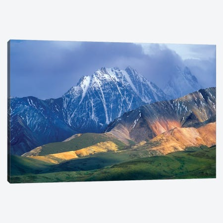 Alaska Range And Foothills, Denali National Park, Alaska Canvas Print #TFI22} by Tim Fitzharris Canvas Artwork