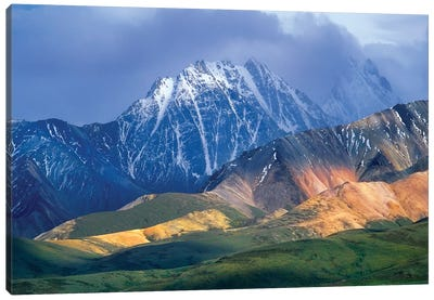 Alaska Range And Foothills, Denali National Park, Alaska Canvas Art Print