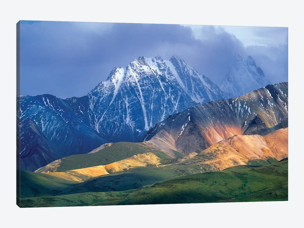 Alaska Range And Foothills, Denali National Park, Alaska by Tim Fitzharris 1-piece Canvas Artwork