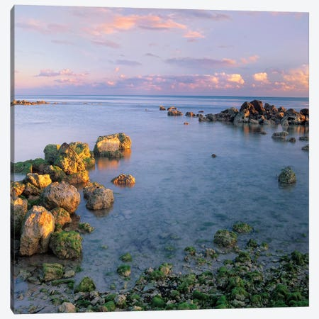 Coastal Rocks, Bahia Honda Key, Florida Canvas Print #TFI231} by Tim Fitzharris Canvas Print