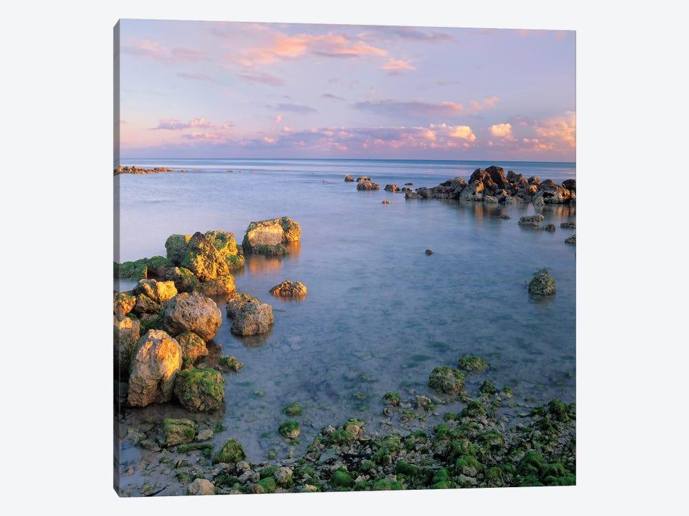 Coastal Rocks, Bahia Honda Key, Florida by Tim Fitzharris 1-piece Canvas Print
