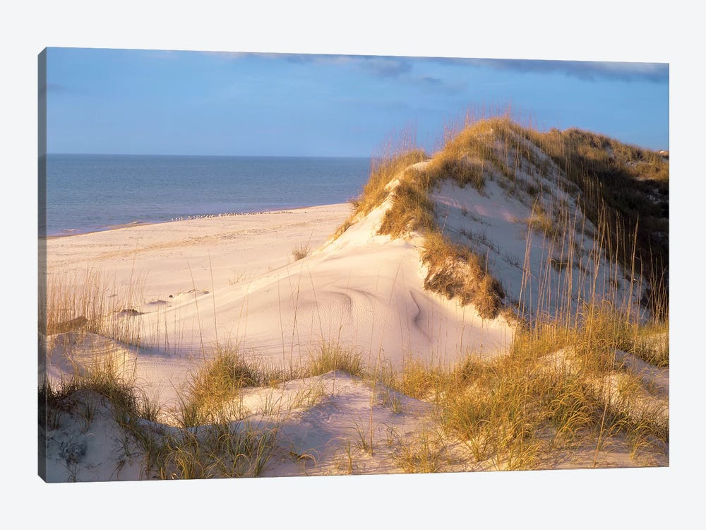 Coastal Sand Dunes, Saint Joseph Peninsula, Florida by Tim Fitzharris 1-piece Canvas Print