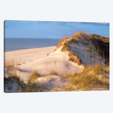 Coastal Sand Dunes, Saint Joseph Peninsula, Florida Canvas Print #TFI233} by Tim Fitzharris Art Print