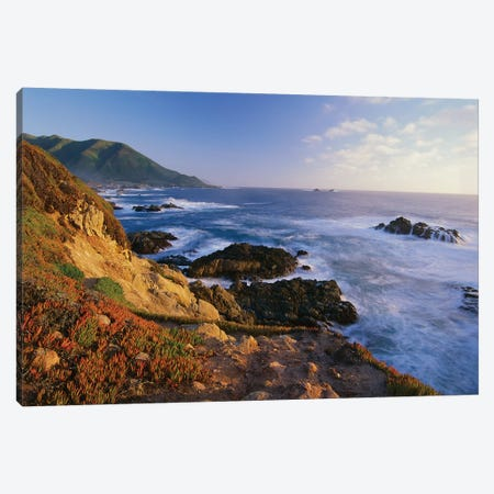 Coastline, Big Sur, Garrapata State Beach, California Canvas Print #TFI235} by Tim Fitzharris Canvas Artwork