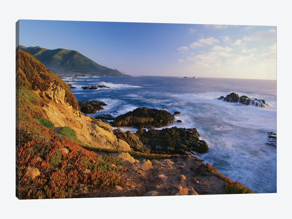 Coastline, Big Sur, Garrapata State Beach, California by Tim Fitzharris 1-piece Art Print