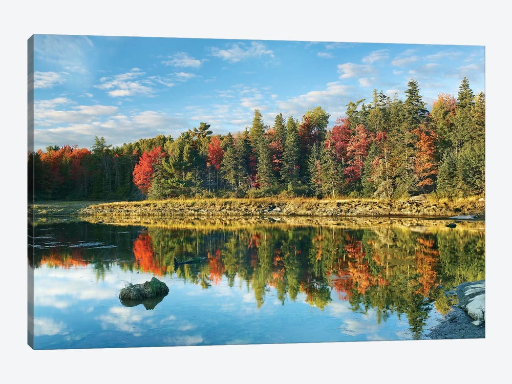 Coastline, Mount Desert Island, Maine by Tim Fitzharris 1-piece Canvas Art