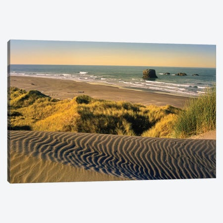 Coastline, Pistol River Beach, Oregon Canvas Print #TFI237} by Tim Fitzharris Canvas Artwork