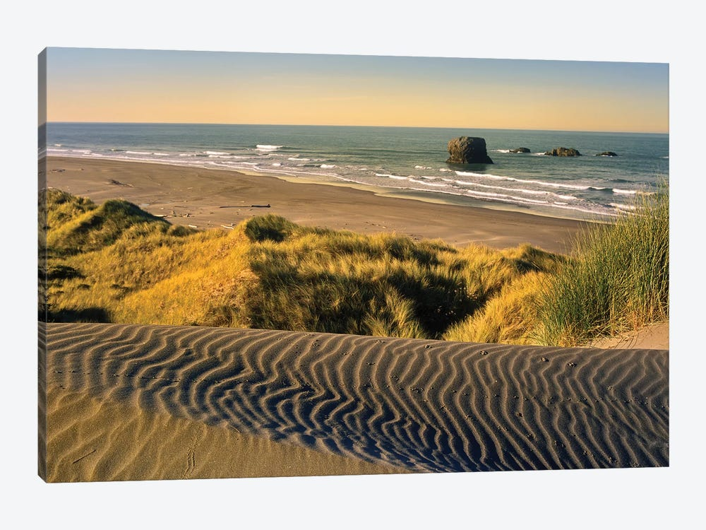 Coastline, Pistol River Beach, Oregon 1-piece Canvas Print