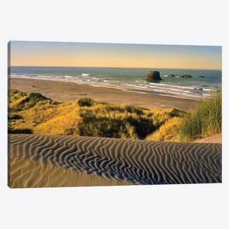 Coastline, Pistol River Beach, Oregon Canvas Print #TFI237} by Tim Fitzharris Canvas Artwork