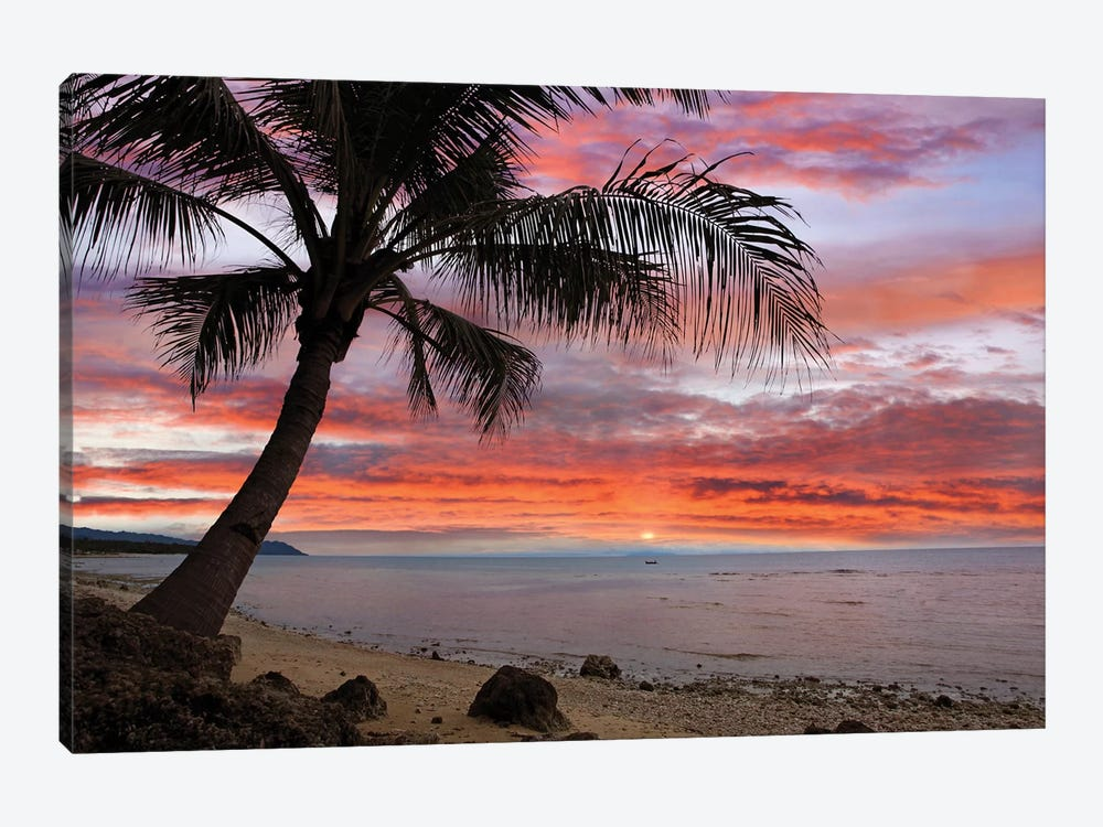 Coconut Palm At Sunset Near Dimiao, Bohol Island, Philippines by Tim Fitzharris 1-piece Canvas Artwork