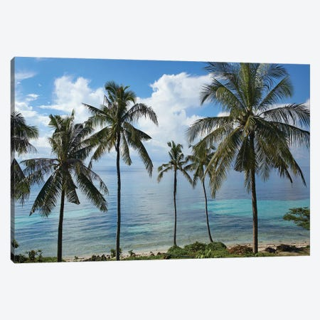 Coconut Palm Trees, Bikini Beach, Panglao Island, Philippines Canvas Print #TFI240} by Tim Fitzharris Canvas Artwork