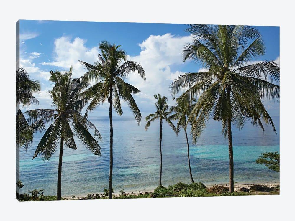 Coconut Palm Trees, Bikini Beach, Panglao Island, Philippines by Tim Fitzharris 1-piece Art Print