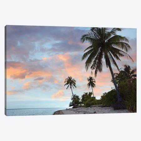 Coconut Palm Trees, Pamilacan Island, Bohol Island, Philippines Canvas Print #TFI241} by Tim Fitzharris Canvas Artwork