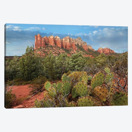 Coffee Pot Rock Near Sedona, Arizona Canvas Print #TFI242} by Tim Fitzharris Canvas Art