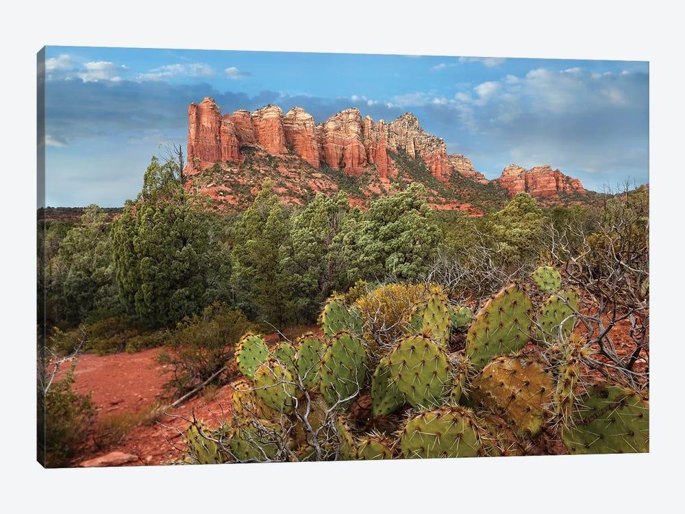 Coffee Pot Rock Near Sedona, Arizona by Tim Fitzharris 1-piece Canvas Print