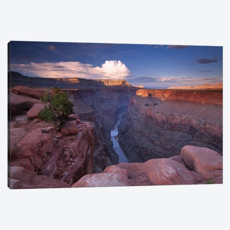 Colorado River From Toroweap Overlook, Grand Canyon National Park, Arizona II Canvas Print #TFI249} by Tim Fitzharris Canvas Art