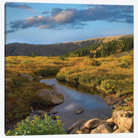 Alpine Stream, Rollins Pass Near Winter Park, Colorado Canvas Print #TFI25} by Tim Fitzharris Canvas Art Print
