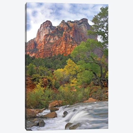 Court Of The Patriarchs, Zion National Park, Utah Canvas Print #TFI276} by Tim Fitzharris Canvas Artwork
