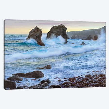 Cove And Seastacks Near Garrapata State, Beach, Big Sur, California Canvas Print #TFI277} by Tim Fitzharris Canvas Wall Art