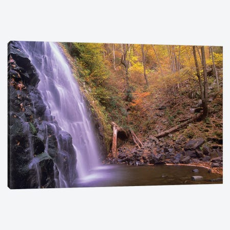Crabtree Falls Cascading Into Stream In Autumn Forest, Blue Ridge Parkway, North Carolina Canvas Print #TFI278} by Tim Fitzharris Canvas Print