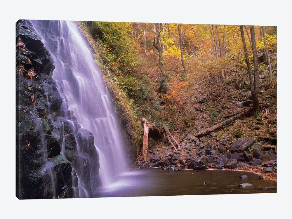 Crabtree Falls Cascading Into Stream In Autumn Forest, Blue Ridge Parkway, North Carolina by Tim Fitzharris 1-piece Canvas Wall Art