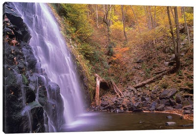 Crabtree Falls Cascading Into Stream In Autumn Forest, Blue Ridge Parkway, North Carolina Canvas Art Print