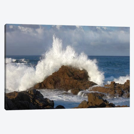 Crashing Waves At Garrapata State Beach, Big Sur, California Canvas Print #TFI280} by Tim Fitzharris Canvas Artwork