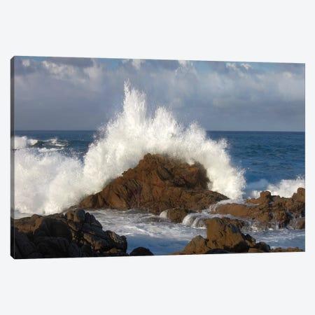Crashing Waves At Garrapata State Beach, Big Sur, California Canvas Print #TFI280} by Tim Fitzharris Canvas Artwork