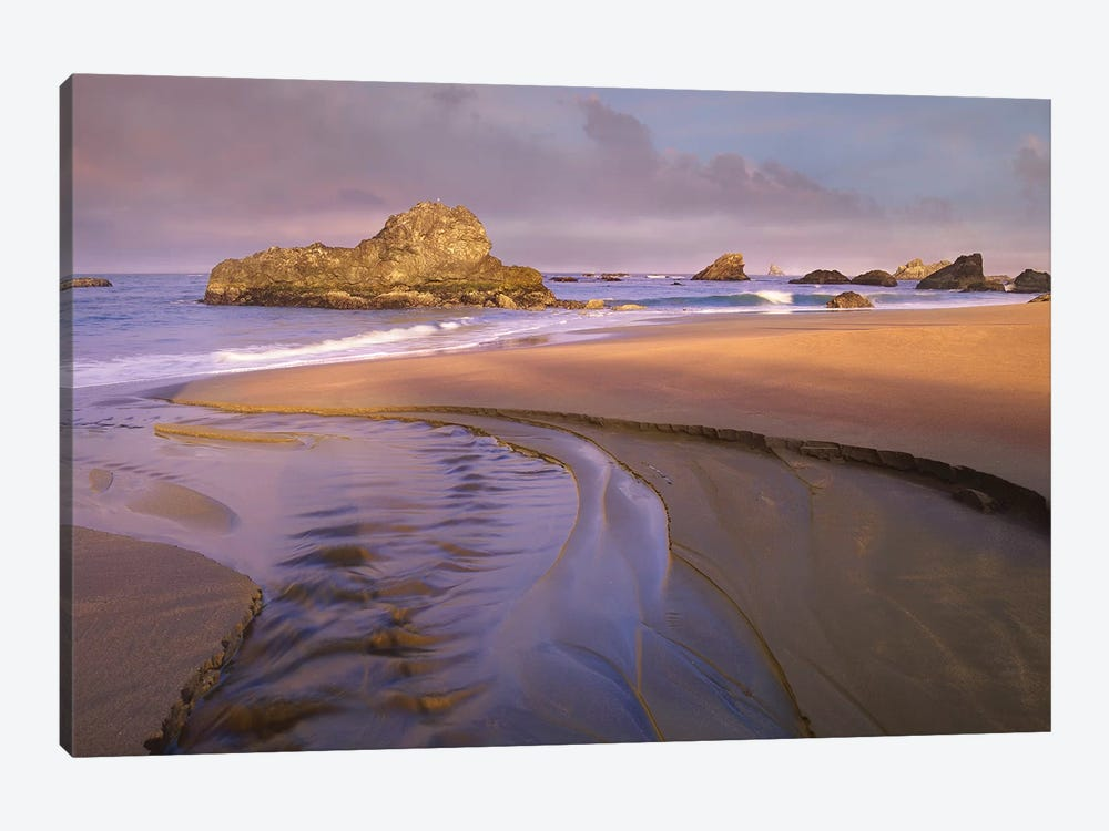 Creek Flowing Into Ocean At Harris Beach State Park, Oregon I by Tim Fitzharris 1-piece Canvas Art