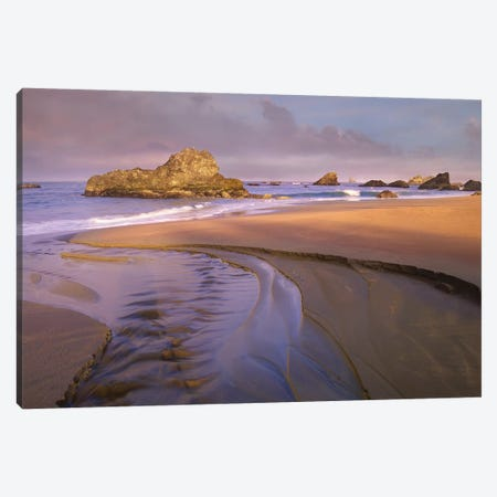 Creek Flowing Into Ocean At Harris Beach State Park, Oregon I Canvas Print #TFI281} by Tim Fitzharris Canvas Art