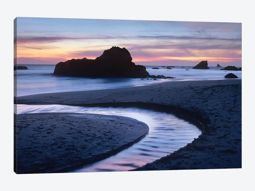 Creek Flowing Into Ocean At Harris Beach State Park, Oregon II by Tim Fitzharris 1-piece Art Print