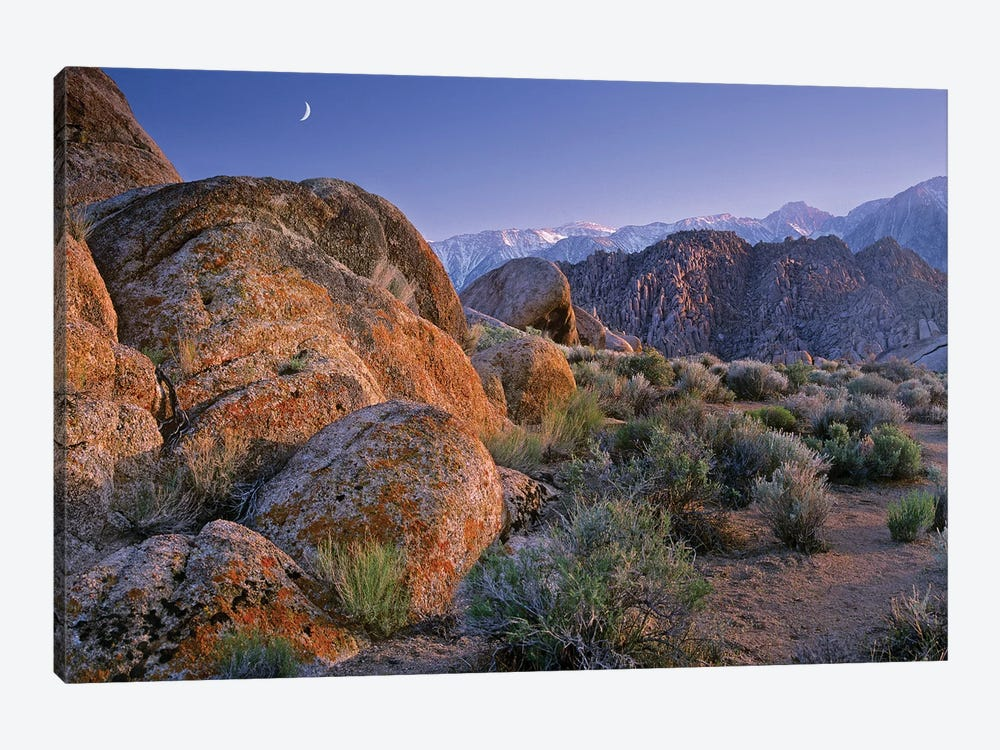 Crescent Moon Rising Over Sierra Nevada Range As Seen From Alabama Hills, California by Tim Fitzharris 1-piece Canvas Print