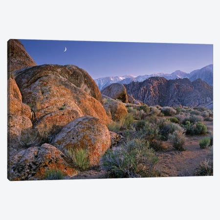 Crescent Moon Rising Over Sierra Nevada Range As Seen From Alabama Hills, California Canvas Print #TFI286} by Tim Fitzharris Canvas Art Print