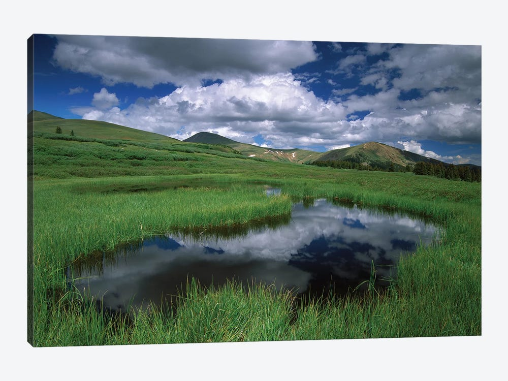 Cumulus Clouds Reflected In Pond At Guanella Pass, Arapaho National Forest, Colorado by Tim Fitzharris 1-piece Canvas Artwork