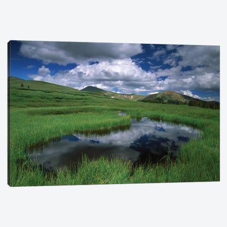 Cumulus Clouds Reflected In Pond At Guanella Pass, Arapaho National Forest, Colorado Canvas Print #TFI287} by Tim Fitzharris Art Print