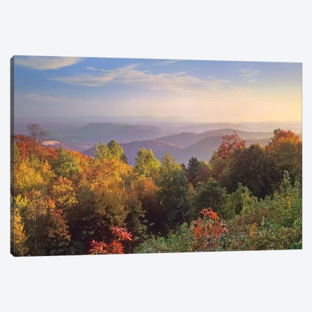 Deciduous Forest In Autumn, Blue Ridge Mountains From Doughton Park, North Carolina 3-Piece Canvas #TFI292} by Tim Fitzharris Art Print