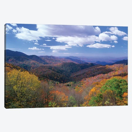 Deciduous Forest In The Autumn From Thunderstruck Ridge Overlook, Blue Ridge Parkway, North Carolina 3-Piece Canvas #TFI295} by Tim Fitzharris Canvas Wall Art