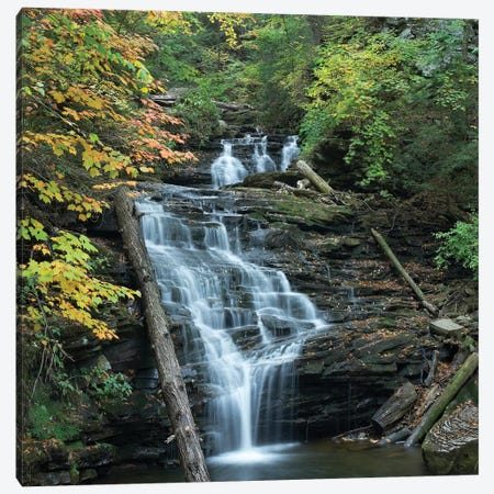 Delaware Falls, Ricketts Glen State Park, Pennsylvania Canvas Print #TFI296} by Tim Fitzharris Canvas Wall Art