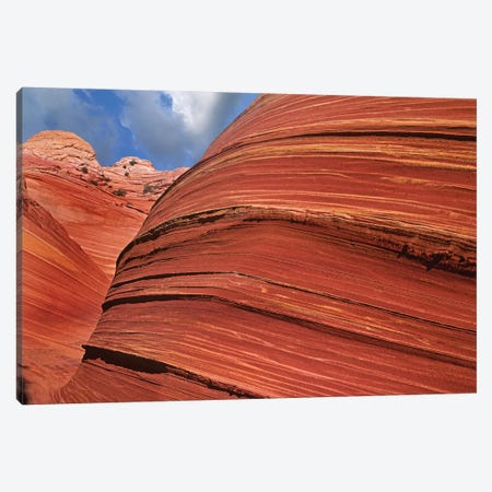 Detail Of The Wave, A Navajo Sandstone Formation In Paria Canyon-Vermilion Cliffs Wilderness, Arizona I Canvas Print #TFI304} by Tim Fitzharris Canvas Artwork