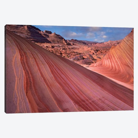 Detail Of The Wave, A Navajo Sandstone Formation In Paria Canyon-Vermilion Cliffs Wilderness, Arizona II Canvas Print #TFI305} by Tim Fitzharris Canvas Artwork