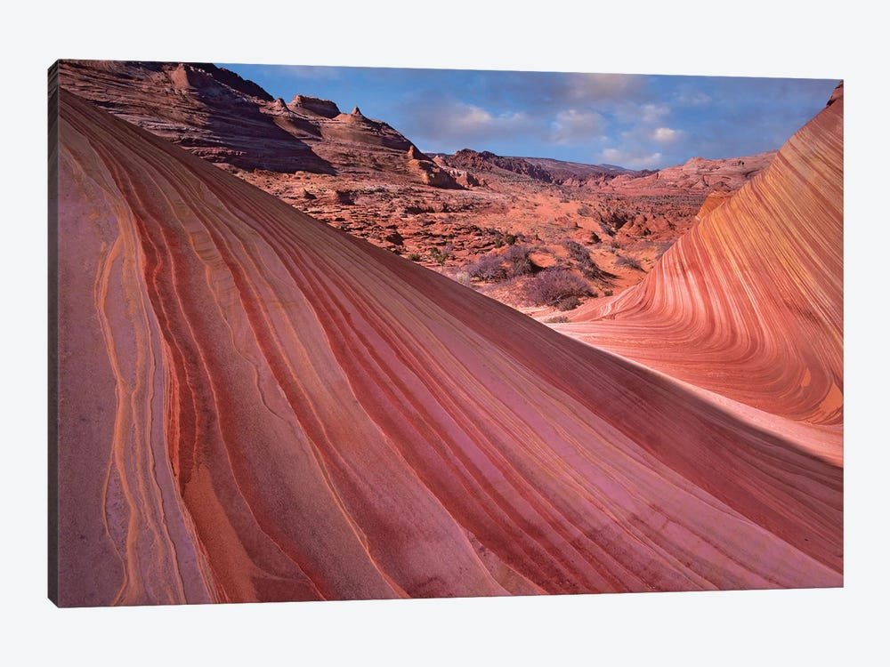 Detail Of The Wave, A Navajo Sandstone Formation In Paria Canyon-Vermilion Cliffs Wilderness, Arizona II by Tim Fitzharris 1-piece Canvas Art Print