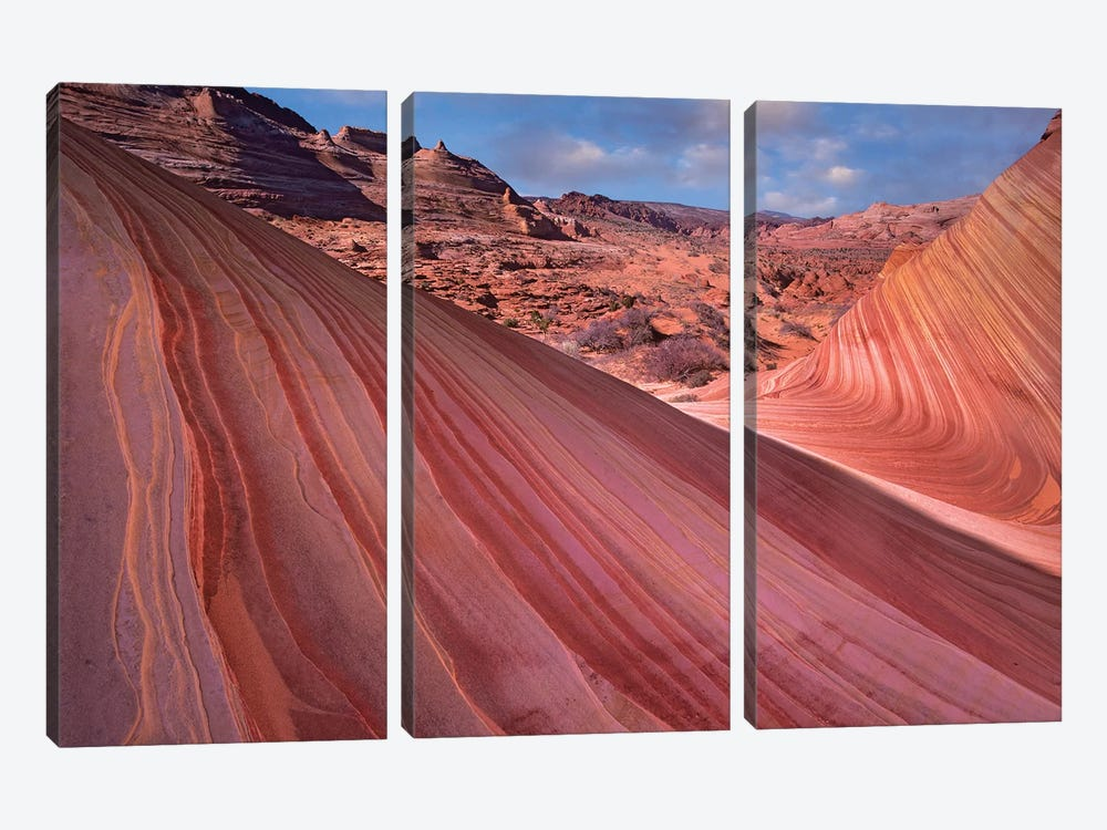Detail Of The Wave, A Navajo Sandstone Formation In Paria Canyon-Vermilion Cliffs Wilderness, Arizona II by Tim Fitzharris 3-piece Canvas Art Print