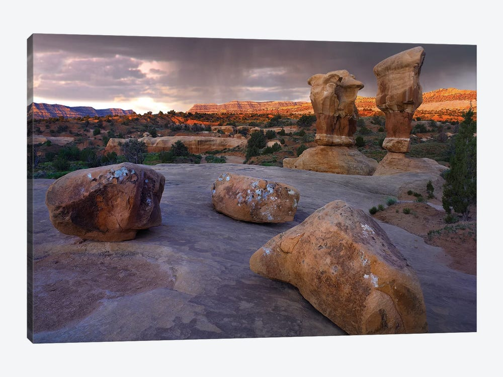 Devil's Garden Sandstone Formations, Escalante National Monument, Utah by Tim Fitzharris 1-piece Canvas Wall Art