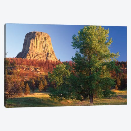 Devil's Tower National Monument Showing Famous Basalt Tower, Sacred Site For Native Americans, Wyoming I Canvas Print #TFI307} by Tim Fitzharris Canvas Wall Art