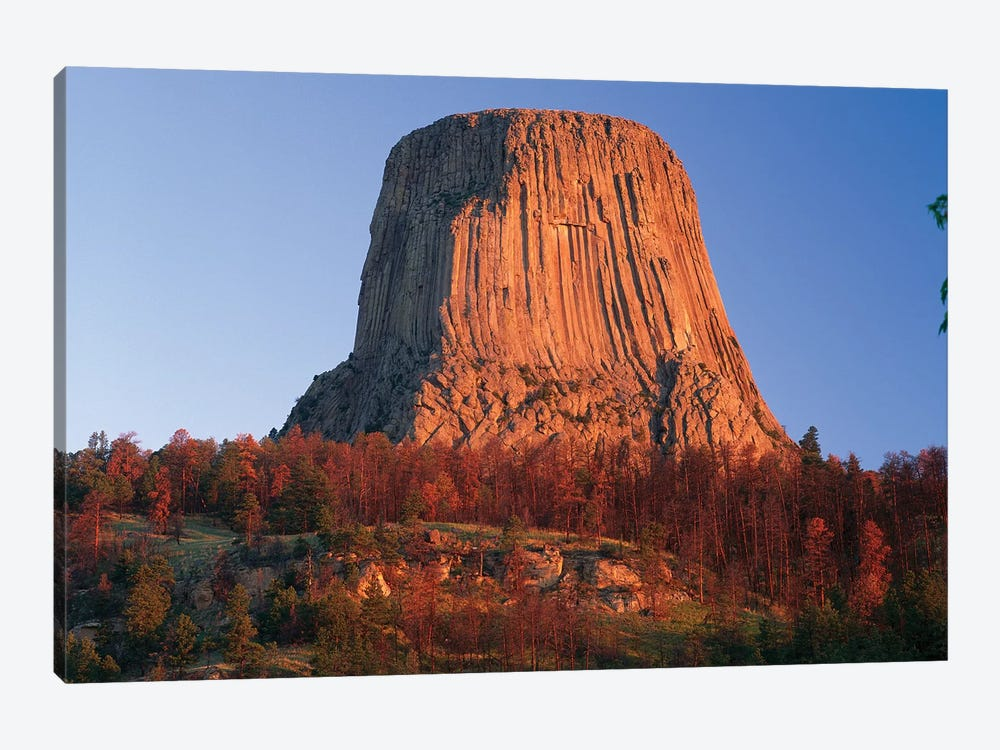 Devil's Tower National Monument Showing Famous Basalt Tower, Sacred Site For Native Americans, Wyoming II by Tim Fitzharris 1-piece Canvas Art