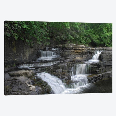 Dismal Falls, Jefferson National Forest, Virginia Canvas Print #TFI310} by Tim Fitzharris Canvas Art