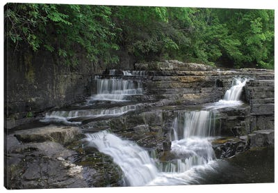 Dismal Falls, Jefferson National Forest, Virginia Canvas Art Print