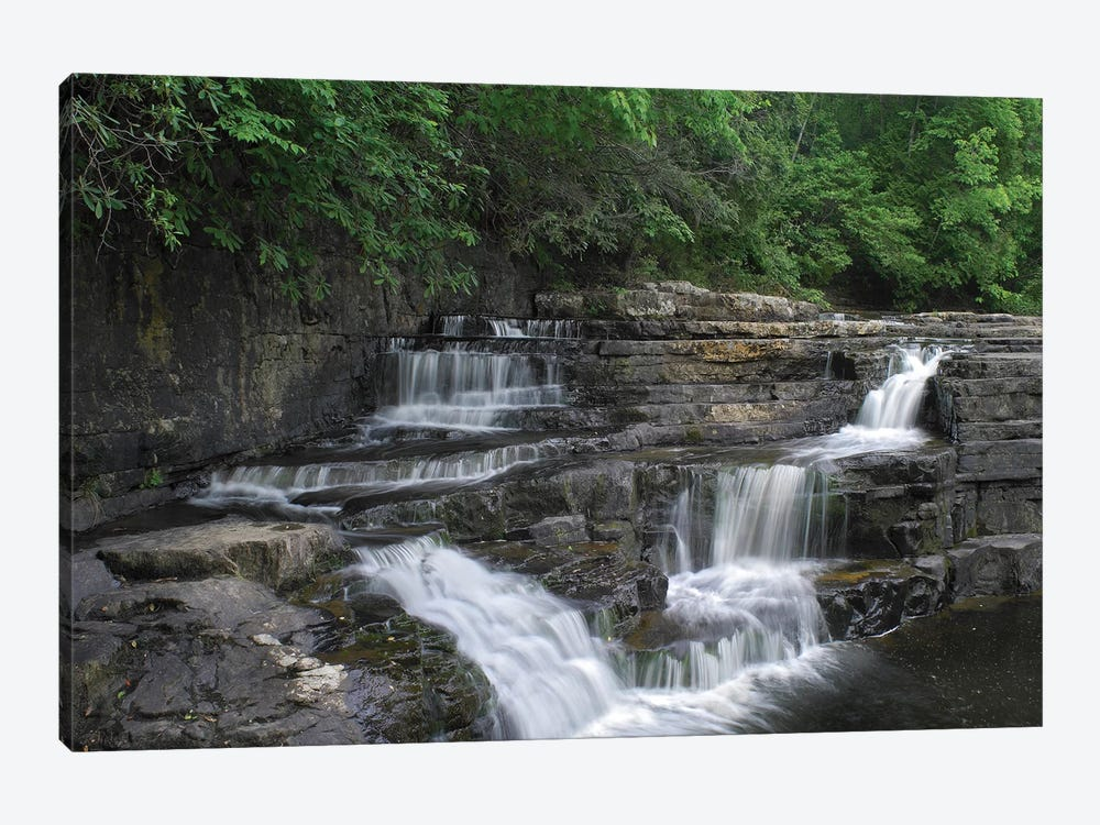 Dismal Falls, Jefferson National Forest, Virginia by Tim Fitzharris 1-piece Canvas Print
