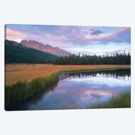Dolomite Peak And Bow River Backwaters, Banff National Park, Alberta, Canada Canvas Print #TFI311} by Tim Fitzharris Canvas Wall Art